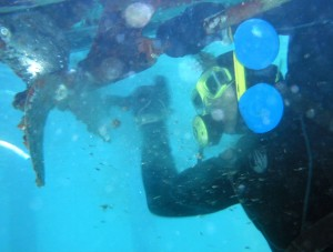 Underwater Cleaning Service